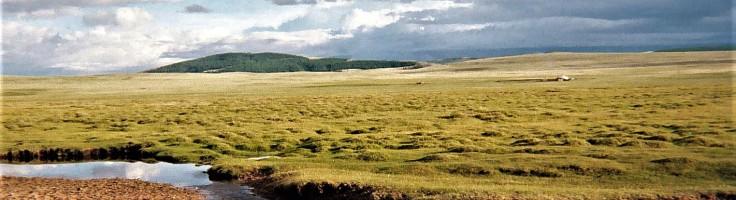 Open Mongolia 2
